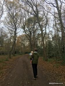 West Runton Heath & Woodland Walk, Norfolk