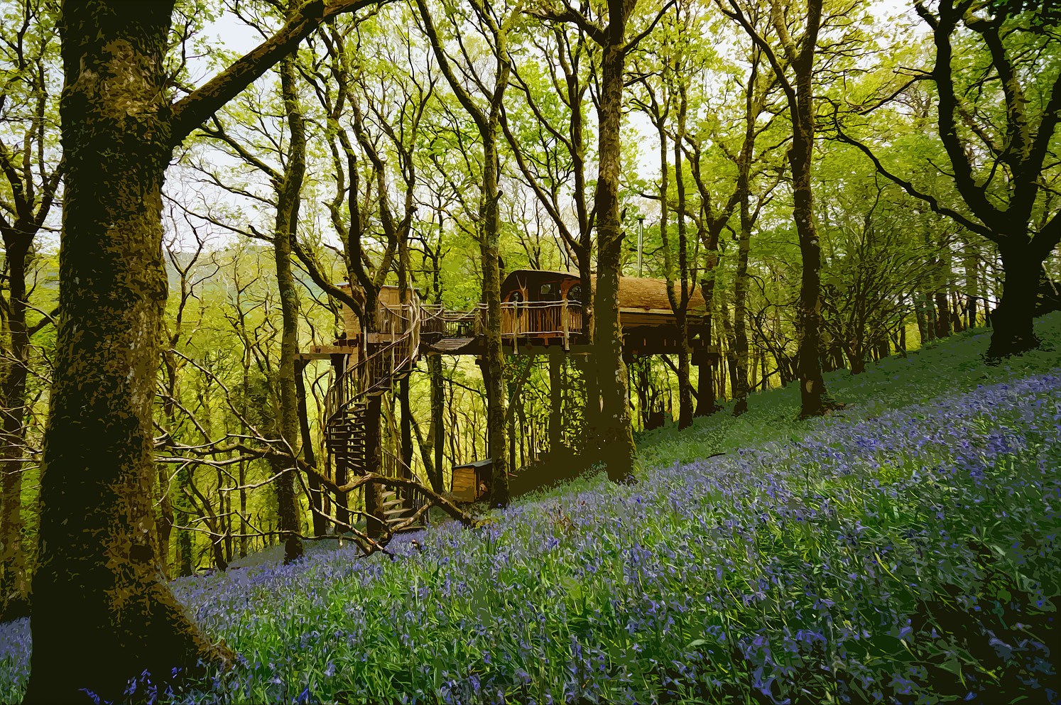 Tree house Wales, unusual sleepover ideas, Living-room.co