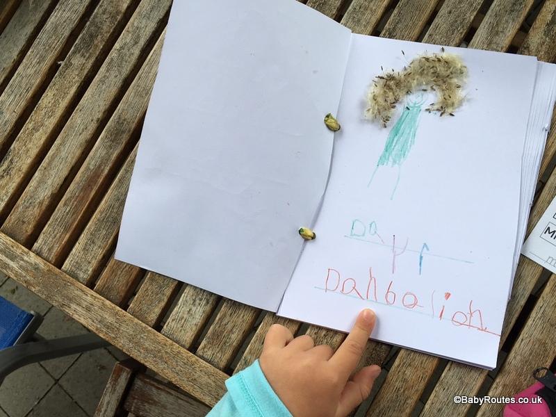 30 Days Wild, Nature Note-Book