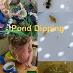 Pond dipping with kids, 30 Days Wild