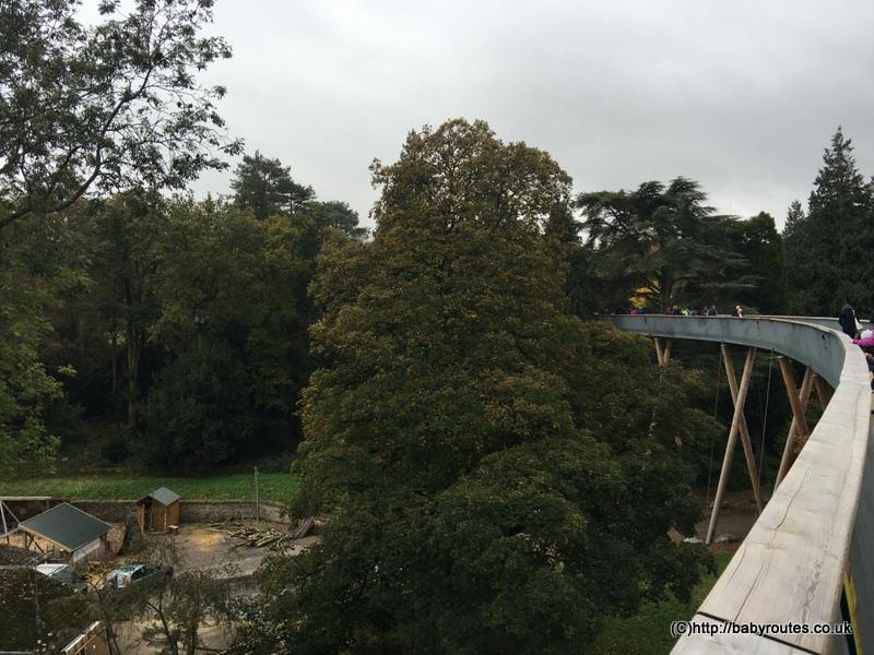 Treetop walk at Westonbirt Arboretum