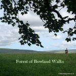Forest of Bowland Walks, Lancashire