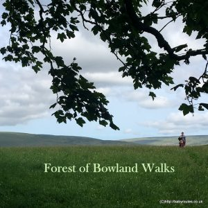 Forest of Bowland Walks, Lancashire