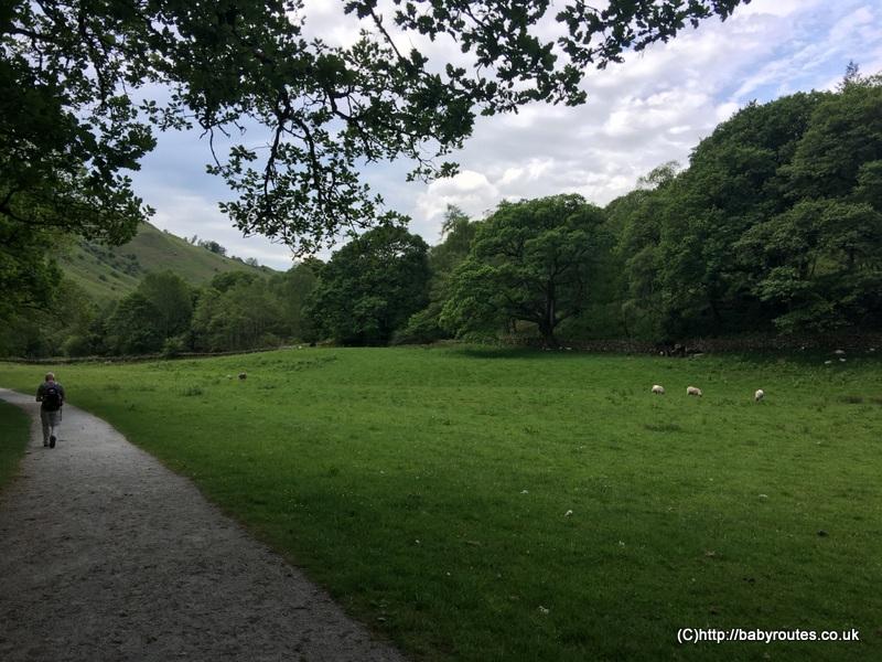 , White Moss walk, Family Friendly Lake District Walks, Cumbria