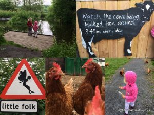 Low Sizergh Farm, Sizergh, Lake District alternative M6 motorway service station stop-offs.