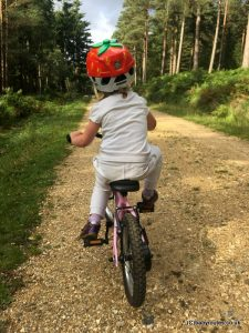 Learning to Cycle with Ridgeback Kids Club , New Forest