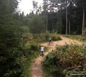 Brock HIll to BlackwaterArboretum Walk, Rhinefield Ornamental Drive, New Forest, Hampshire