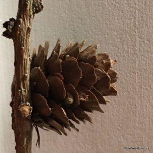 Christmas Nature Crafts: How to Make a Pine Cone Santa