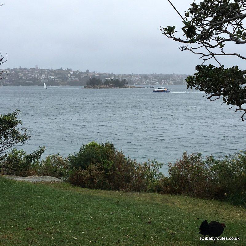 Bradleys Head Circular Walk, Sydney, Australia