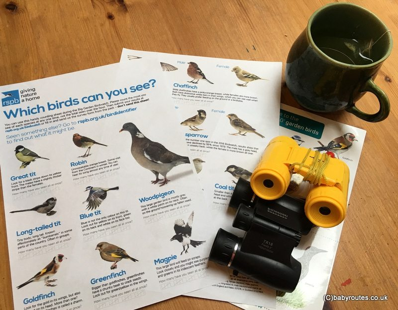 Big Garden Birdwatch 2018