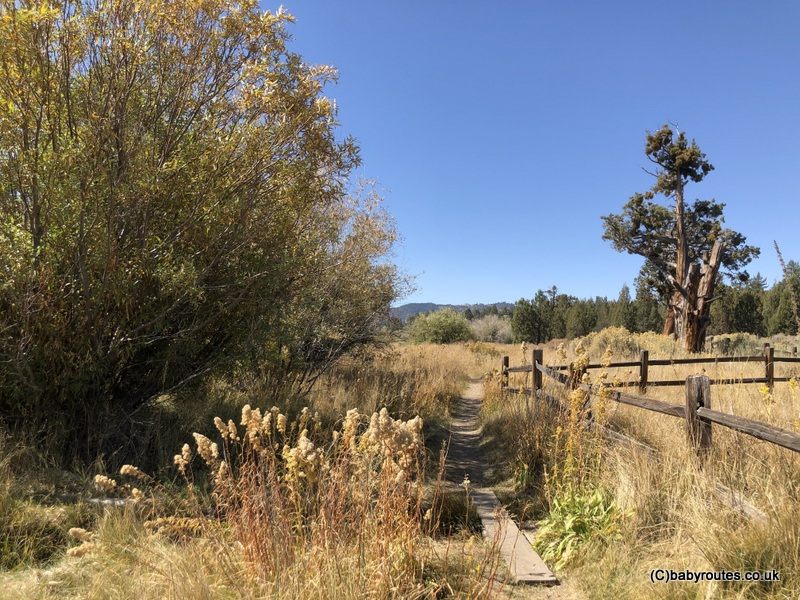 Alpine Pedal Path Circular Hike, Big Bear Lake, California USA